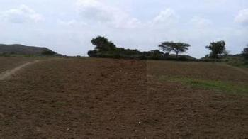 13000 sq ft Industrial Land/Plot for rent in Kundli