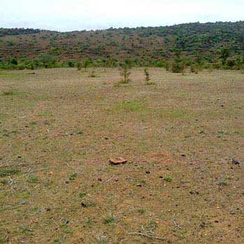 Industrial Land/plot for Sale in Sector - 6, Faridabad.