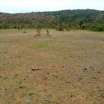 Industrial Land/plot for sale in Sector- 58, Faridabad