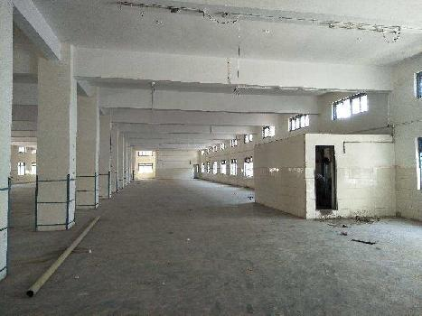 1600 Sq.ft. Warehouse/Godown for Rent in Sector 55, Faridabad