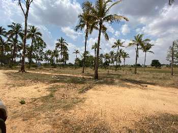 Farm Land For Sale in Chikkaballapur, Bangalore