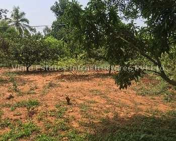 Agricultural Farm Land For Sale In Bangalore