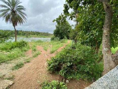 Agricultural land in Bangalore
