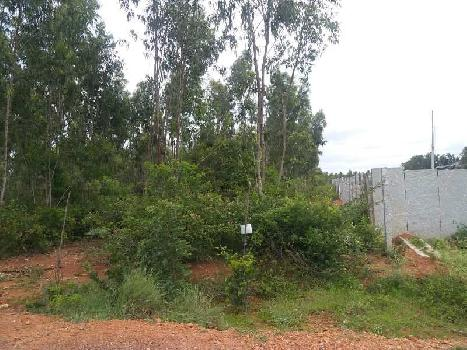 50 Acre Agricultural/Farm Land for Sale in Maddur, Bangalore
