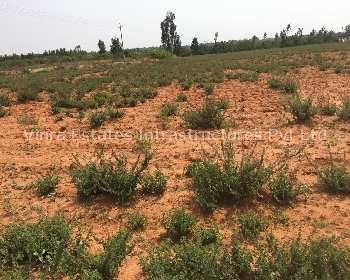 Agricultural Land For Sale In chikballapur