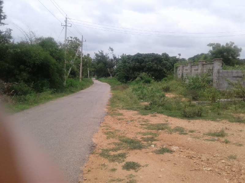 Farm House With 30 acre land for sale