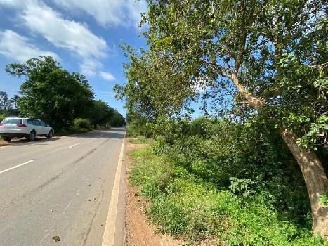 Agricultural Land For Sale in Kolar
