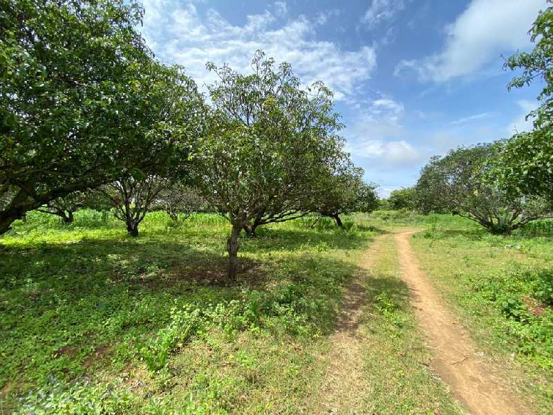 Agricultual Land For Sale In Bangalore