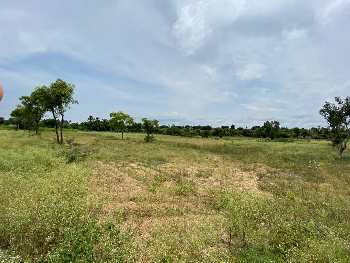 Farm Land For Sale in Chikkaballapura