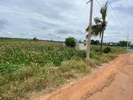 Farmland For Sale In Chikkaballapur