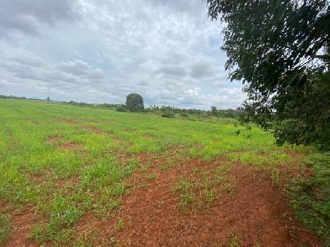 Farmland for sale at Chikballapur