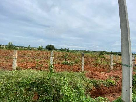 Agricultural Land For Sale