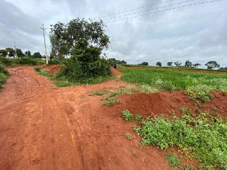 Agricultural Land Fro Sale