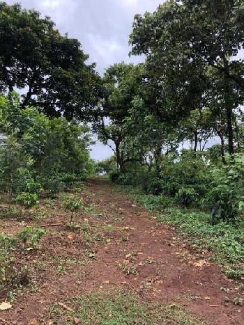 Estate for sale in Sakaleshpura