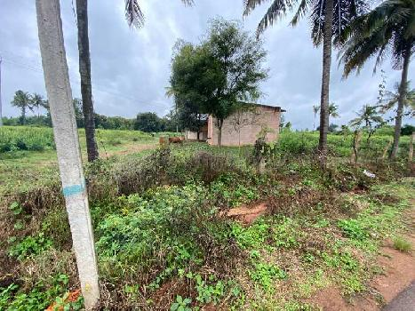 Agricultural land  For Sale near Devanahalli