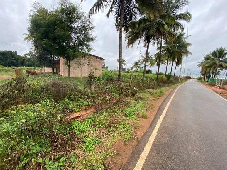 Agricultural land  For Sale near Devanahalli