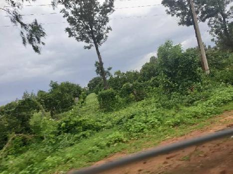 Agricultural Land For Sale in Chikkaballapur