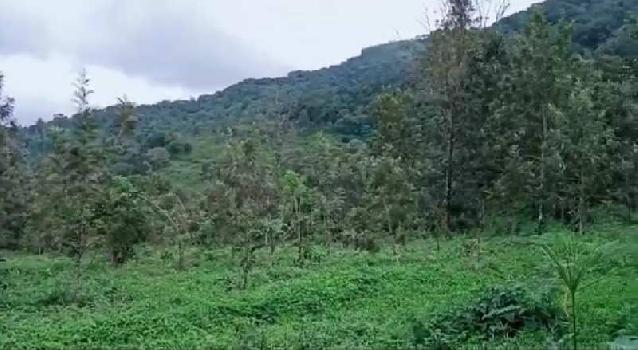 Farmland for sale in Coorg