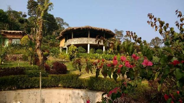 Coffee Estate With Homestay For Sale in Chikmagalur