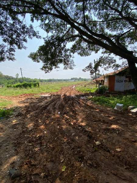 Agricultural land for sale in doddballapur