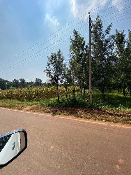 Agricultural land for sale near doddballapur