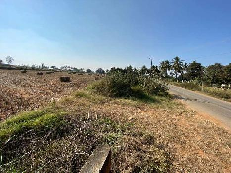 Agricultural land for sale in yelahanka