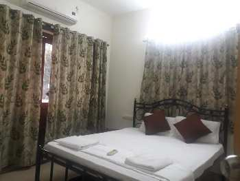 2 BHK Flats & Apartments for Rent in Arpora, Goa
