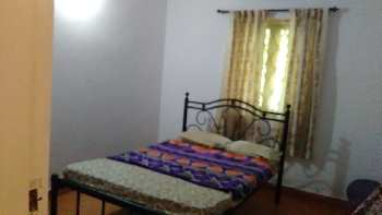 2 BHK Flats & Apartments for Rent in Cobra Vaddo, Calangute, Goa