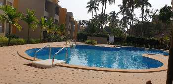 2 BHK Flats & Apartments for Rent in Anjuna, Goa
