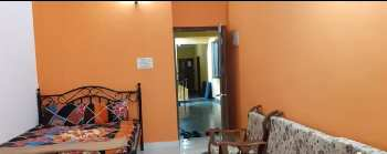 1 BHK Flats & Apartments for Rent in Candolim, Goa
