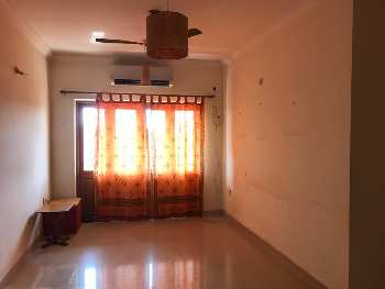 2 BHK Flats & Apartments for Rent in Dona Paula, Goa