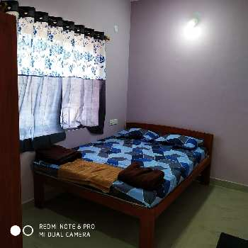 1 BHK Flats & Apartments for Rent in Baga, Goa
