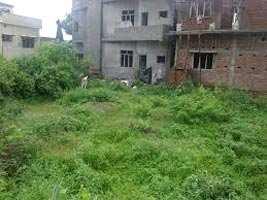 Farm House Land for Sale At Bhimashankar, Pune