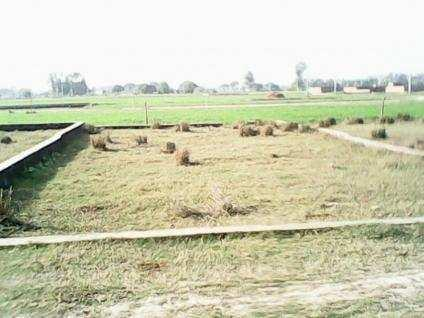 Plot for Sale in Aashiana Colony Kanpur Road Lucknow