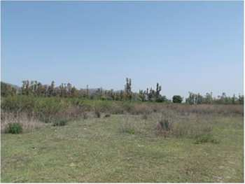 Residential Plot For Sale In Sushant Golf City, Lucknow