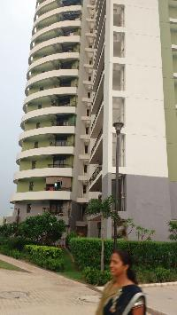 3 BHK Flats & Apartments for Rent in Sector 119, Noida