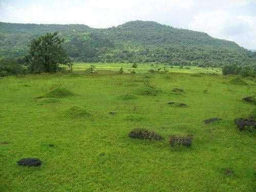 Farm Land for Sale at Aurangabad