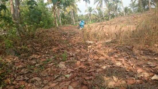 10 Cents Residential Land for sale in REC, Calicut
