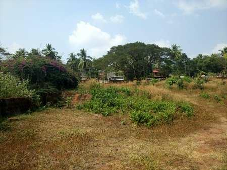 Commercial Land for Sale in Feroke, Calicut (Kozhikode)