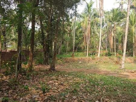 Residential Plot for Sale in Kozhikode
