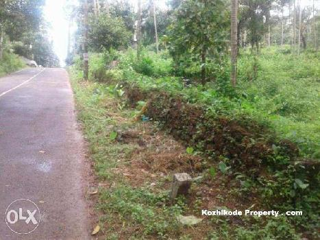 Residential Plot for Sale in Calicut (Kozhikode)