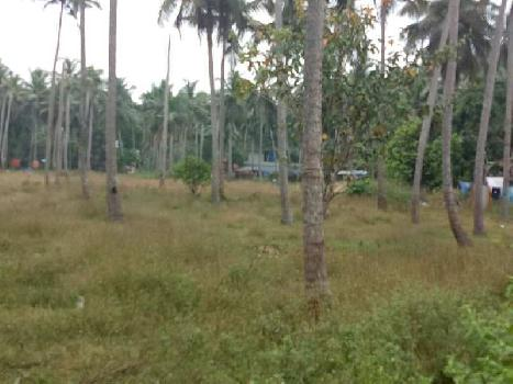 100 Meter River frontage Land for sale at Mavoor, Calicut.