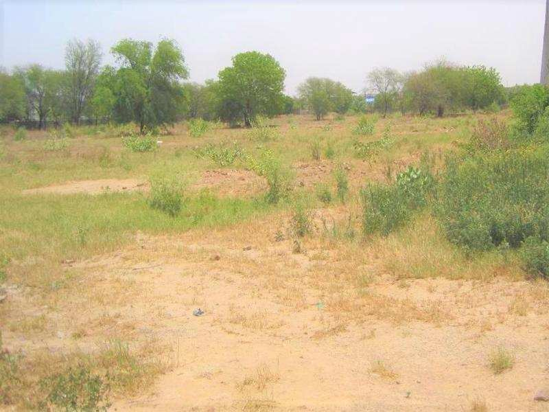 Agriculture Land For Ware House For Sell