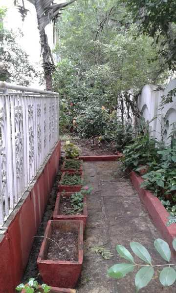 Residential Plot for Sale in Panchavati, Pashan