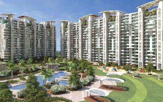 3 BHK Flats & Apartments for Rent in Sas Nagar, Mohali