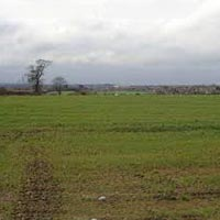 4 Acre Land for Sale in Wagholi