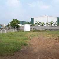 Pune Nagar Road Koregaon Bhima (Digrajwadi) 8 Acre R zone Near Mapple Group P
