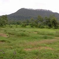 6 Acre R Zone Plot for Sale.