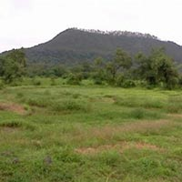 Residential Land / Plot for Sale in Shikrapur, Pune