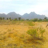 5.8 Acre Residential Land / Plot for Sale in Shikrapur, Pune